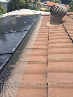 Pigeon control solar panel 3